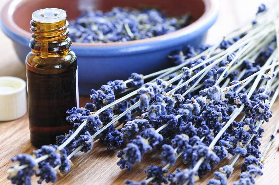 Home Care Services in Villa Hills KY: Essential Oils for Seniors